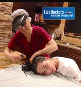There are Lice Salons where classy coiffed parasites get perms and blow-drys!